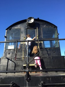 VF February blog train2