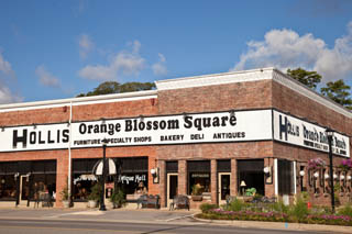 Hollis Orange Blossom Square