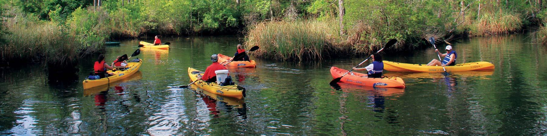 Graham Creek Nature Preserve